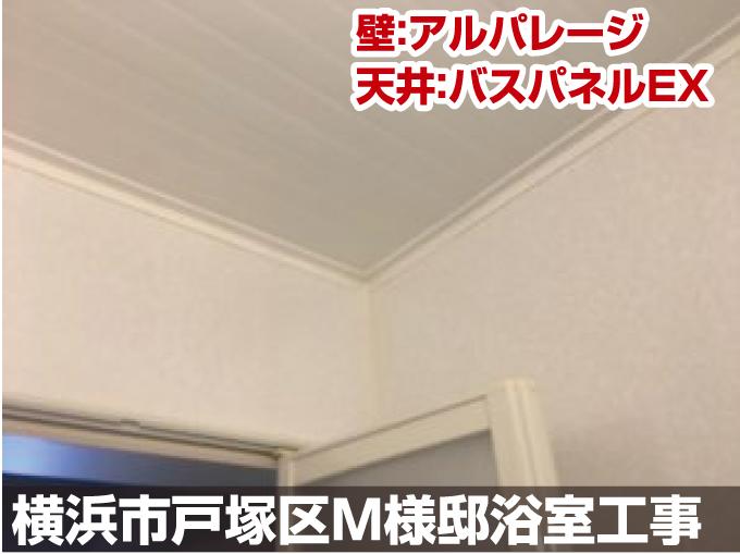 壁:アルパレージ 天井:バスパネルEX